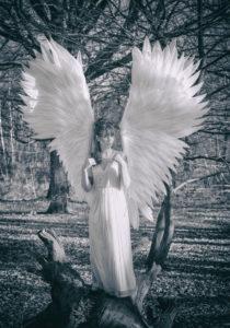 Un ange dans une fôret